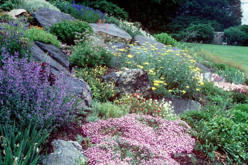 Sloped Rock Garden Ideas Slopes And Rock Gardens