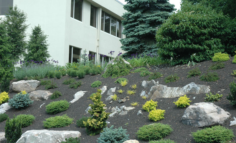 Maher greenwald slopes and rock gardens gallery for Sloped rock garden designs