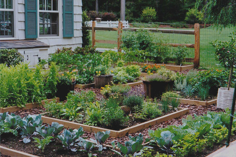 Maher & Greenwald :: Vegetable/Cutting/Herb Gardens Gallery